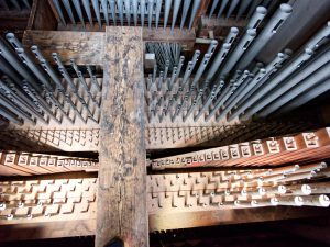 Pfeifenwerkd der Goll Orgel